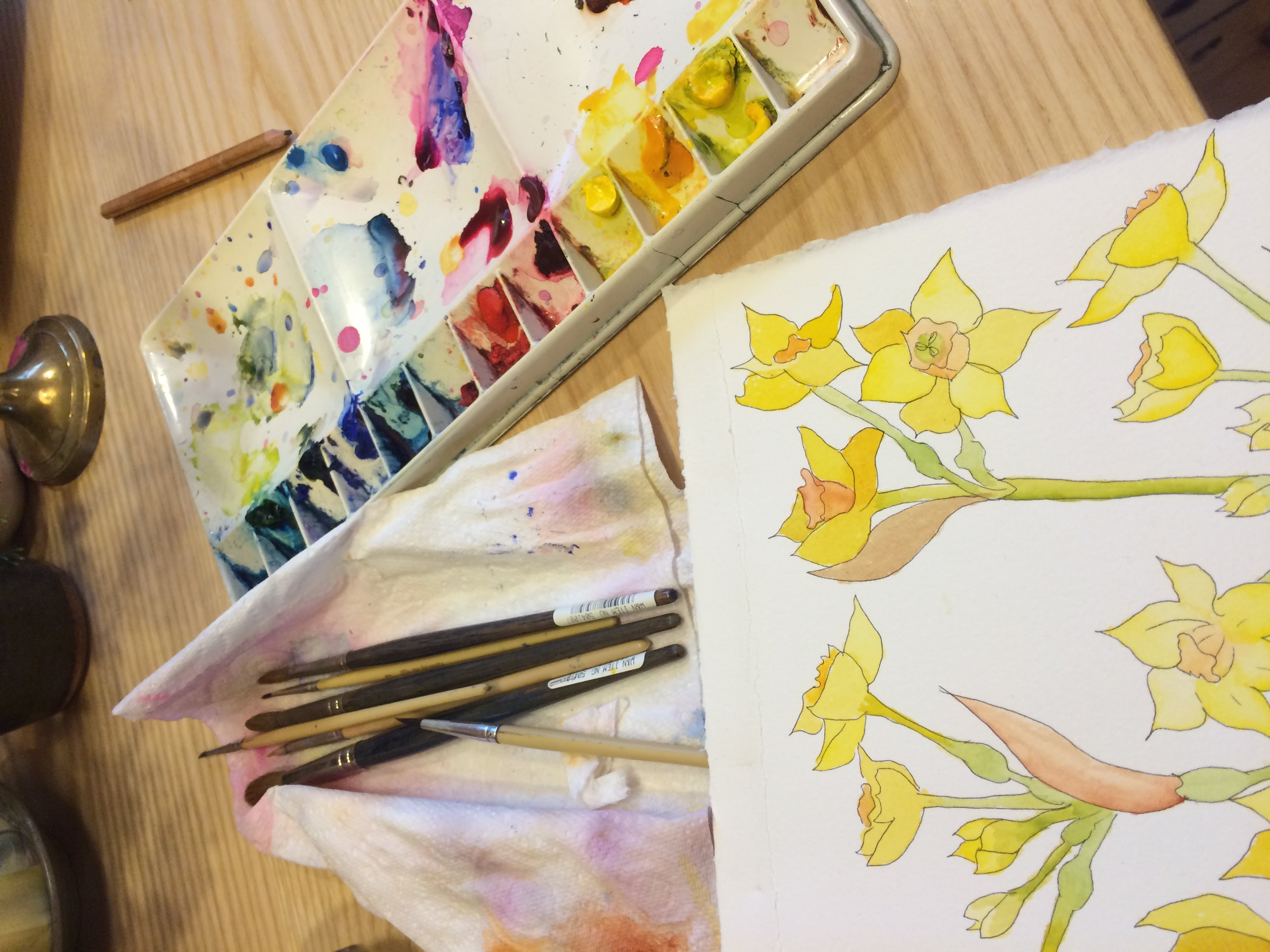 Narcissi Watercolour Flowers with Janet Edwards at Cambridge Art Makers painting course