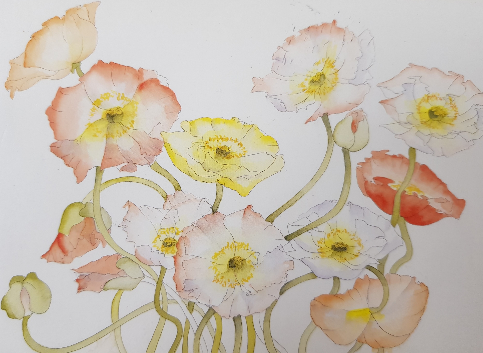 Watercolour Flowers with Janet Edwards at Cambridge Art Makers