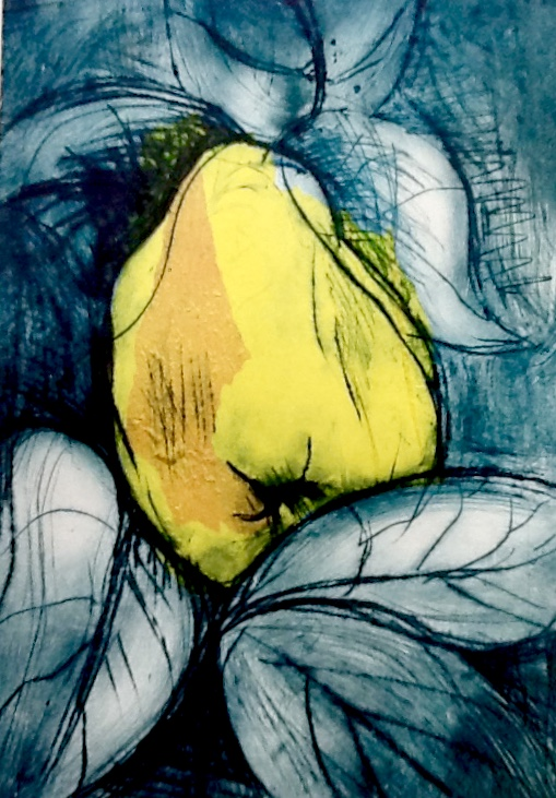 Printmaking Course Quince with Sue Jones at Cambridge Art Makers